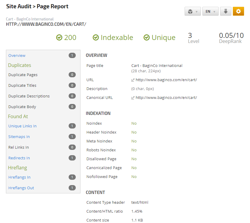 Site Audit Page Report