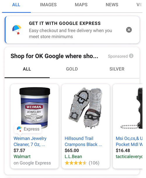 Google Express Promotion