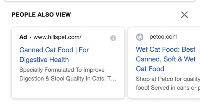People Also View Google Ads Test